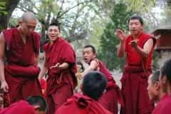 4-monks-debate-at-Sera-mona